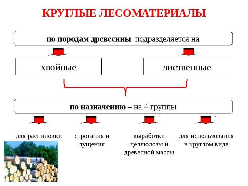 Пиломатериалы и их виды и классификация по внешнему виду и способу обработке: виды, классификация, требования, применение