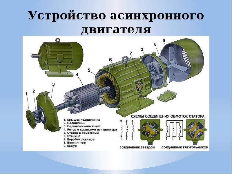 Конструкция асинхронного электродвигателя - 160 фото, схемы, чертежи и примеры использования