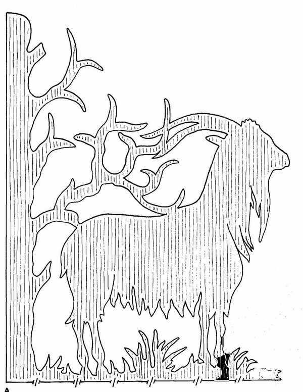 Рисунки для выпиливания лобзиком из фанеры: разновидности, особенности, назначение