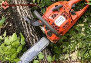 Как выбрать хорошую бензопилу для садовых работ: советы грамотных экспертов