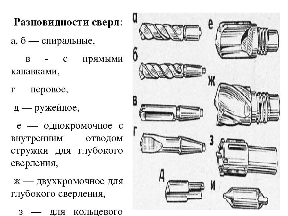 Сверло по дереву – описание разных видов, как отличить от сверла по металлу, особенности заточки