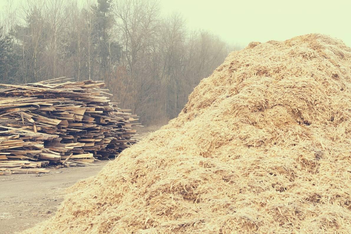 Классификация древесных отходов и технологии вторичной переработки