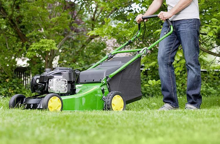 Как выбрать газонокосилку бензиновую для дома - полезные советы
