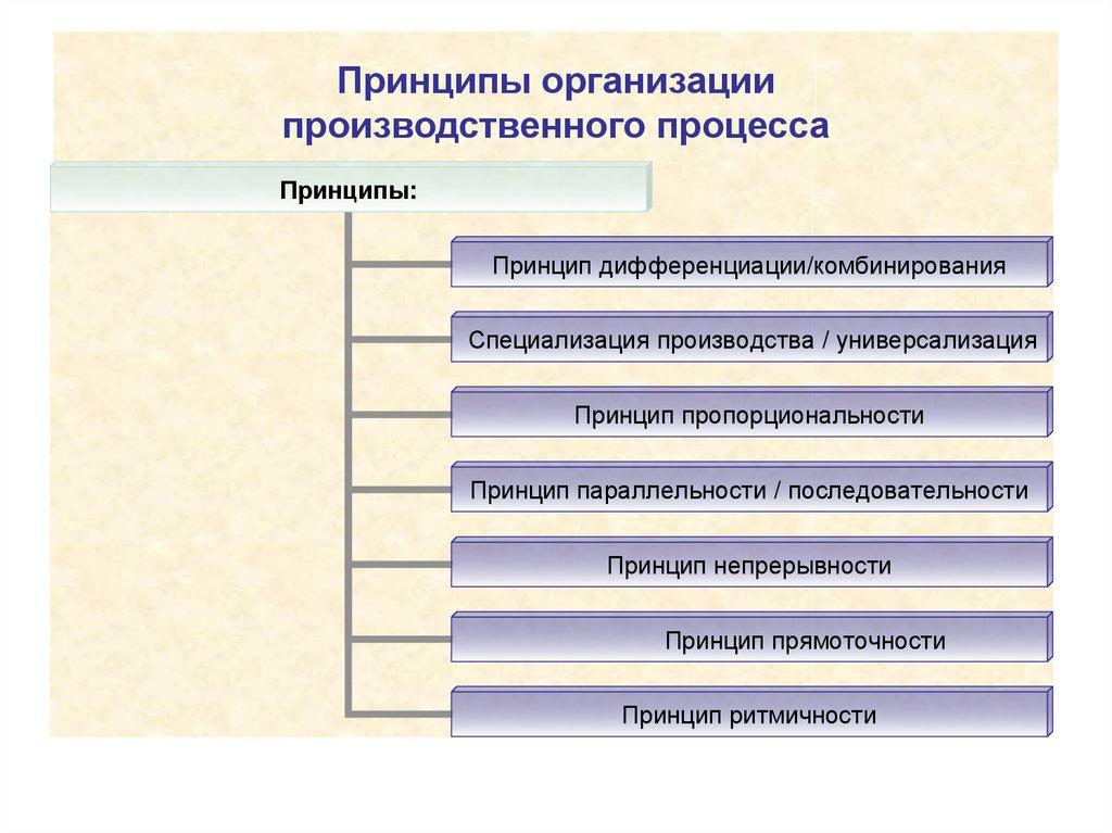 Организация производства. производственный процесс