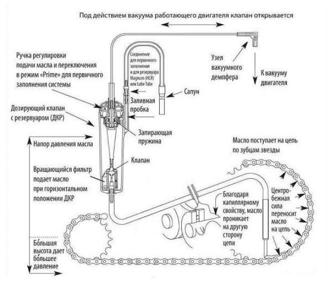 Масло для цепи бензопилы: принцип его работы и основы подбора