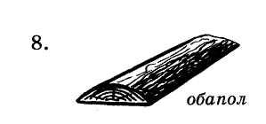 Все, что нужно знать о хвойных породах древесины