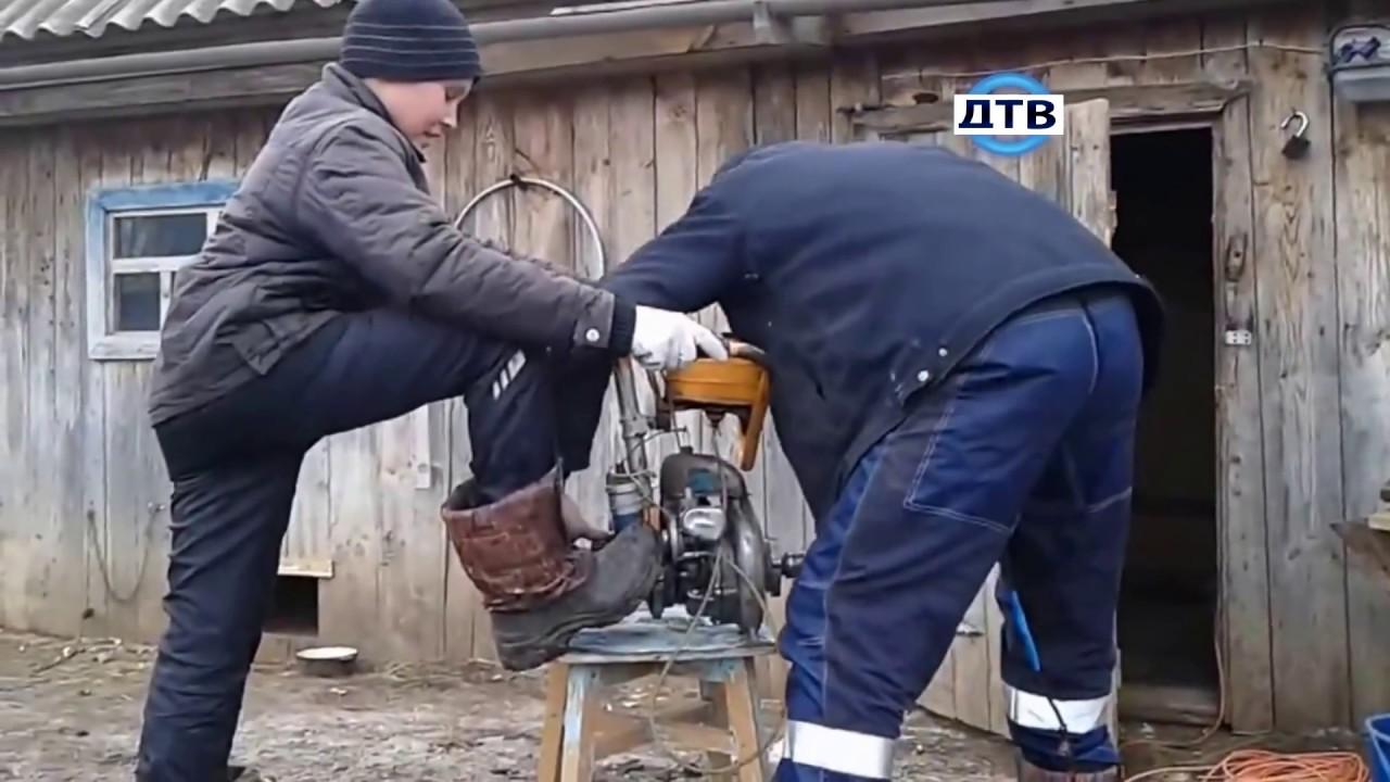 """Как правильно завести бензопилу: инструкция для пилы """"штиль"""""""