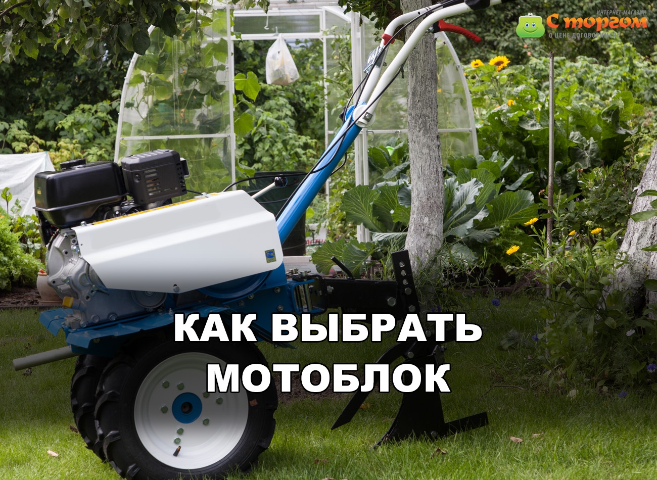Как выбрать мотоблок для огорода: какой агрегат лучше?