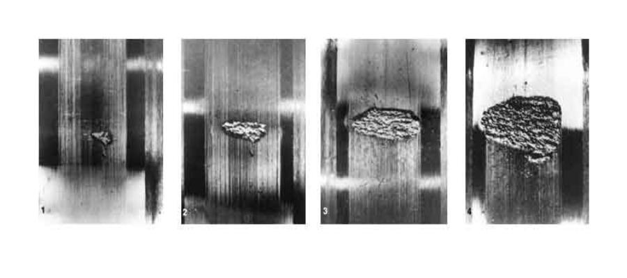 Поговорим о «наклепе» в заточке и изготовлении ножей