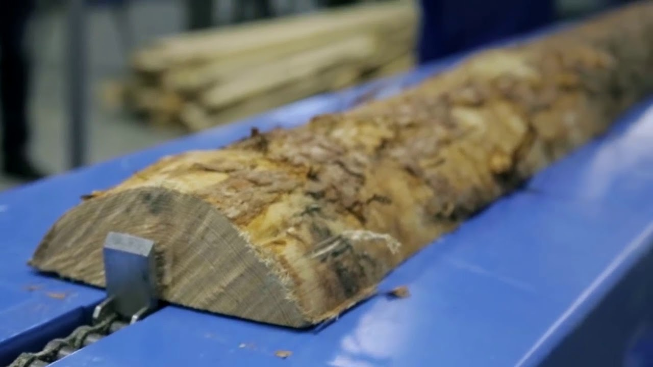 Переработка древесины — технологии и оборудование