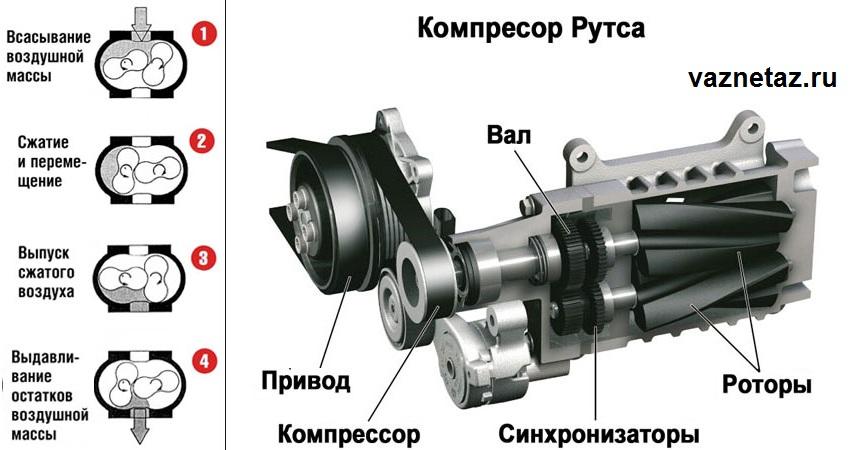 Устройство и принцип действия роторного насоса | directprom.ru