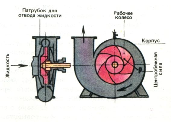Как устроен центробежный насос - основные характеристики. жми!