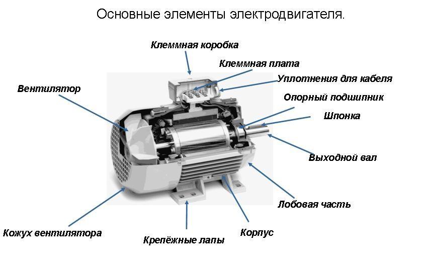 Ремонт шуруповерта своими руками: 110 фото особенностей современного инструмента