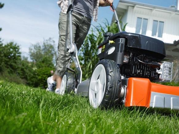 Как выбрать газонокосилку? 7 основных факторов при выборе