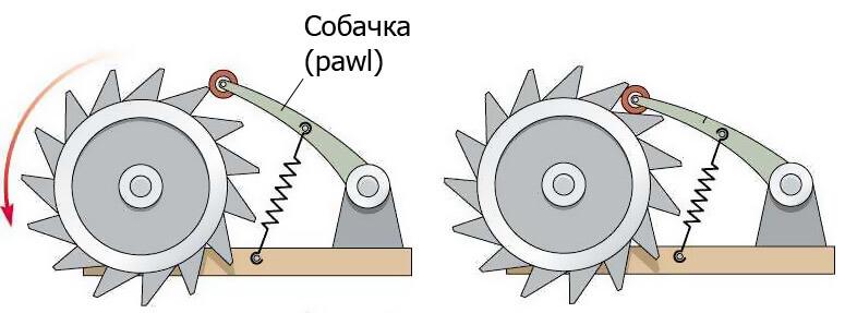 Как работает храповый механизм? :: syl.ru